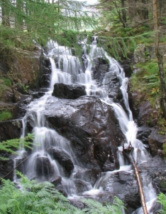 Conwy County Waterfall